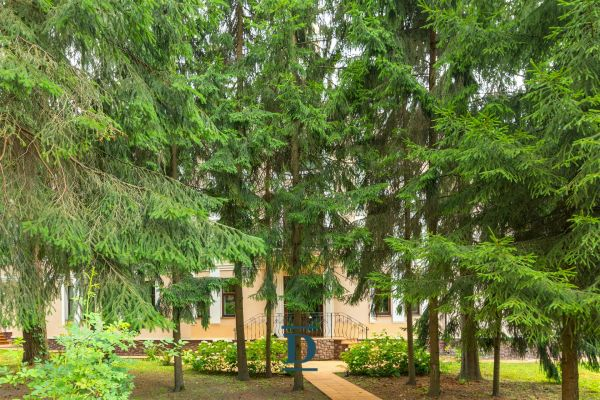 дом ID-1 в коттеджном посёлке Шервуд фото-22